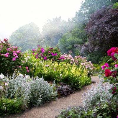 Jardins de fleurs avec allée centrale dans les Vosges
